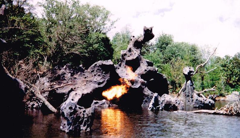 Discovery Island Dragon